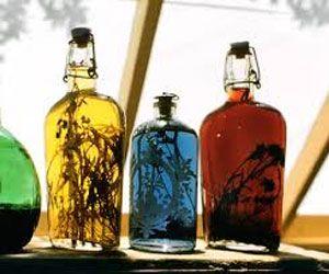 О производстве драгоценного скисшего вина или уксуса